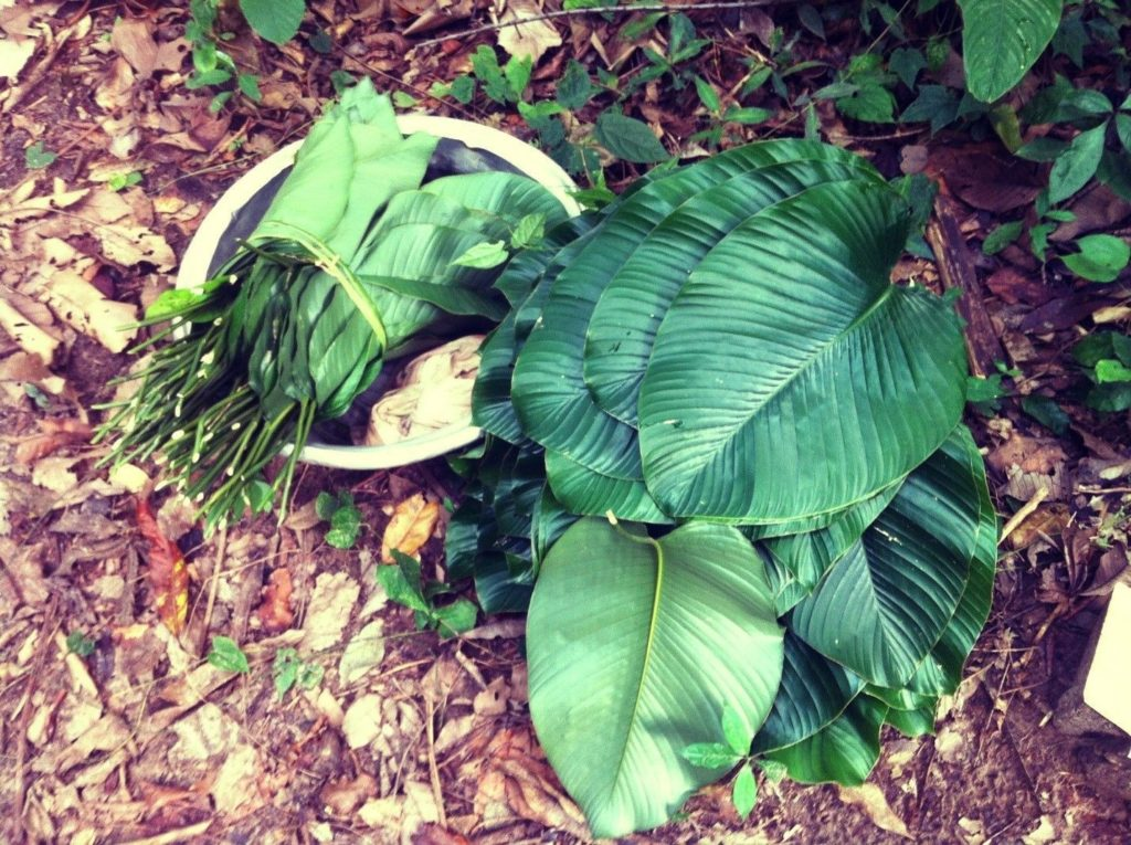 waakye leaves